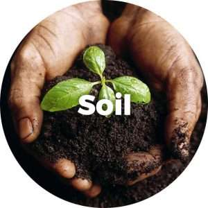 02GLS_Soil_text